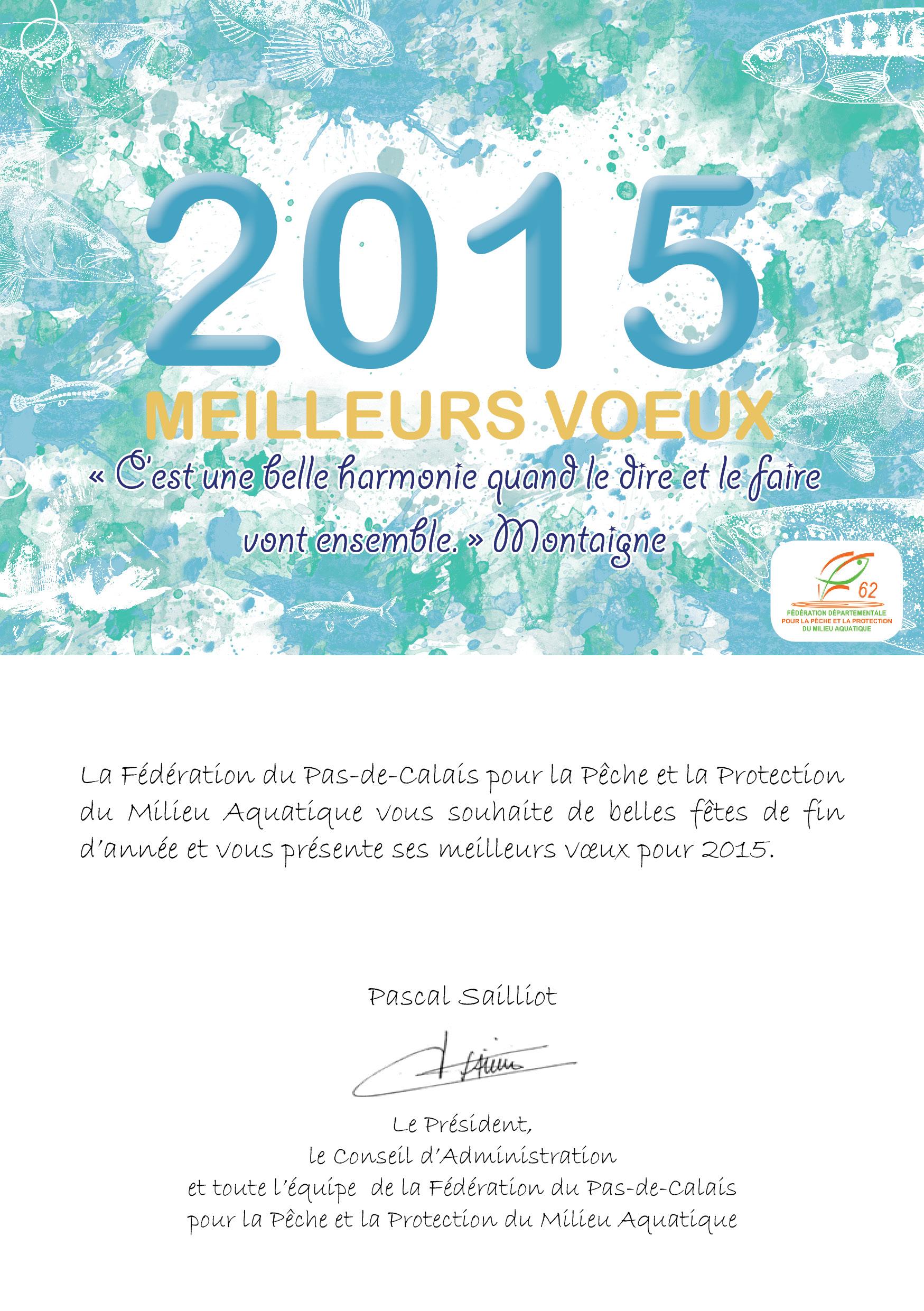 Carte de voeux 2015 V01
